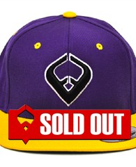 LIVE IT SNAPBACK Purple & Yellow 6-panel Cap Seamed Front Panel with Full Buckram 6 Embroidered Eyelets Matching Crown Color Pro Stitch on Crown 8 Rows Stitching on Visor Gray Undervisor Plastic Snap...